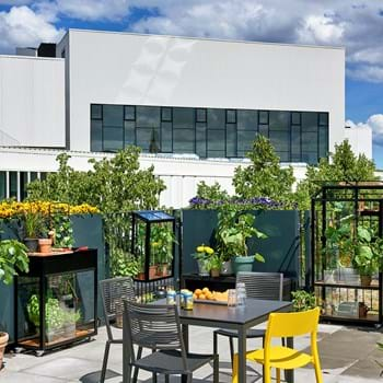Urban life is sprouting in the new small city greenhouses