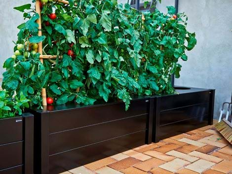 Juliana Capillary watering-box planter