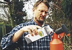 Gewächshauspflanzen werden auch krank